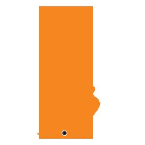 FIN-orange