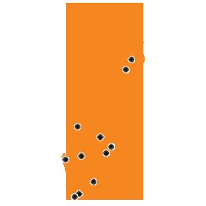 SWE-orange